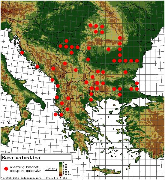 Rana dalmatina - mapa všech obsazených kvadrátů, UTM 50x50 km
