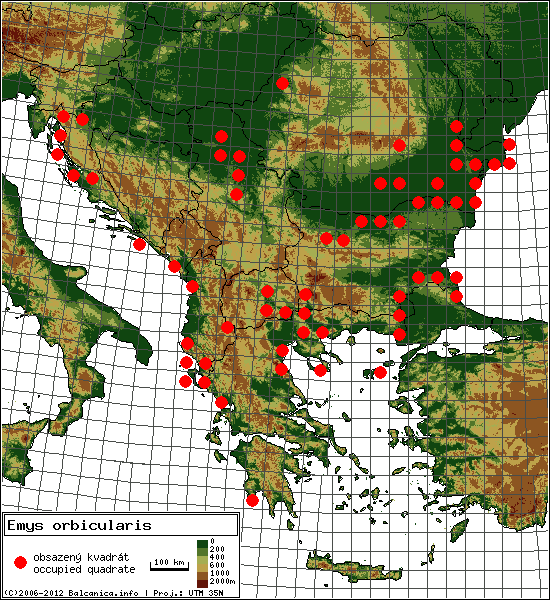 Emys orbicularis - Map of all occupied quadrates, UTM 50x50 km