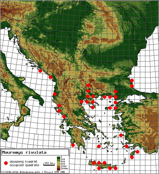 Mauremys rivulata - mapa všech obsazených kvadrátů, UTM 50x50 km