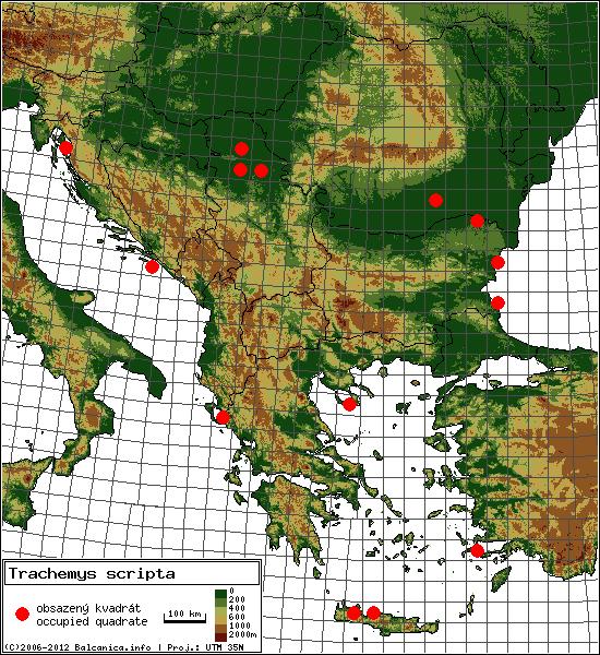 Trachemys scripta - mapa všech obsazených kvadrátů, UTM 50x50 km