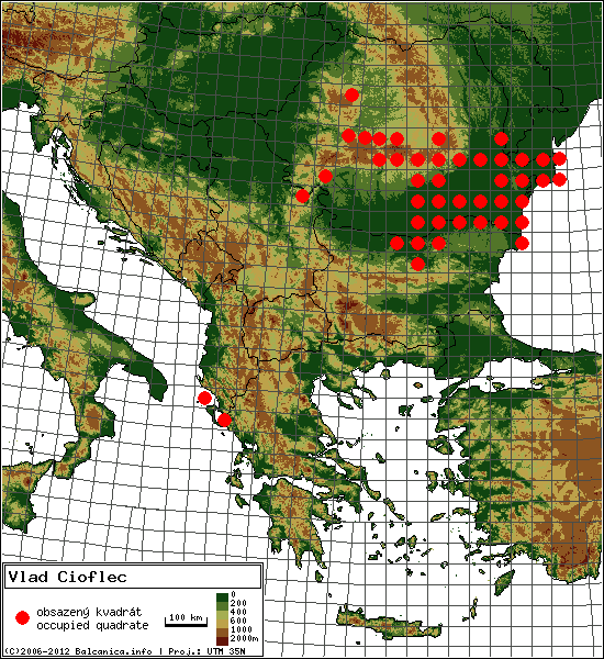 Vlad Cioflec - Map of all occupied quadrates, UTM 50x50 km