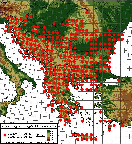 mapa všech obsazených kvadrátů, UTM 50x50 km