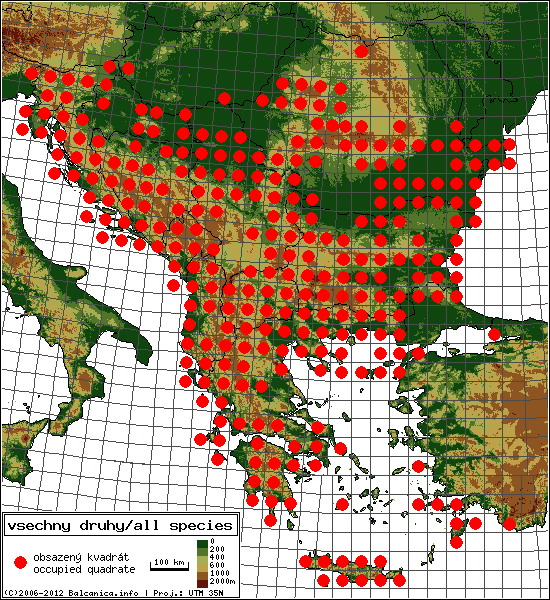 Map of all occupied quadrates, UTM 50x50 km