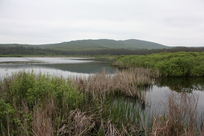 Arkutino, Аркутино