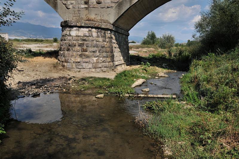 Damjanica, Дамяница
