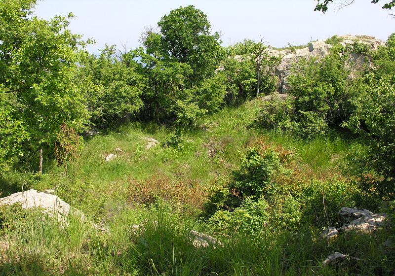 Sozopol,  Apollonia,  Sizebolu