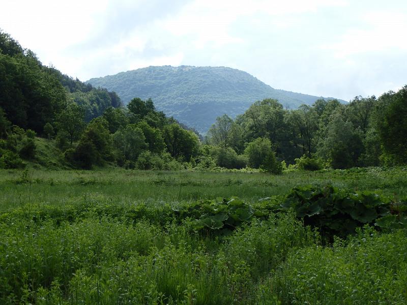 Dolenci, Demir Hisar, Makedonie