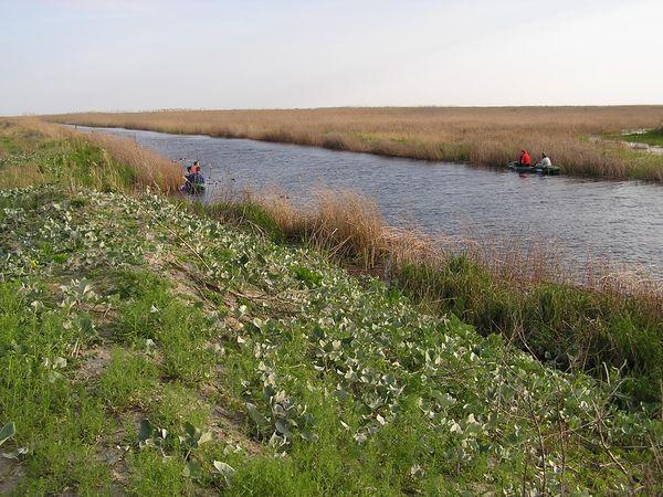 kanál Tataru, Tataru canal