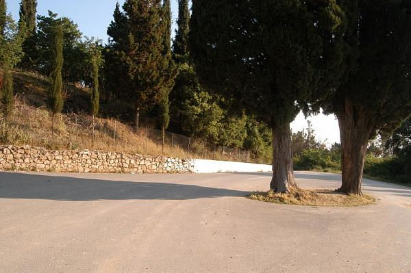 Ardenica