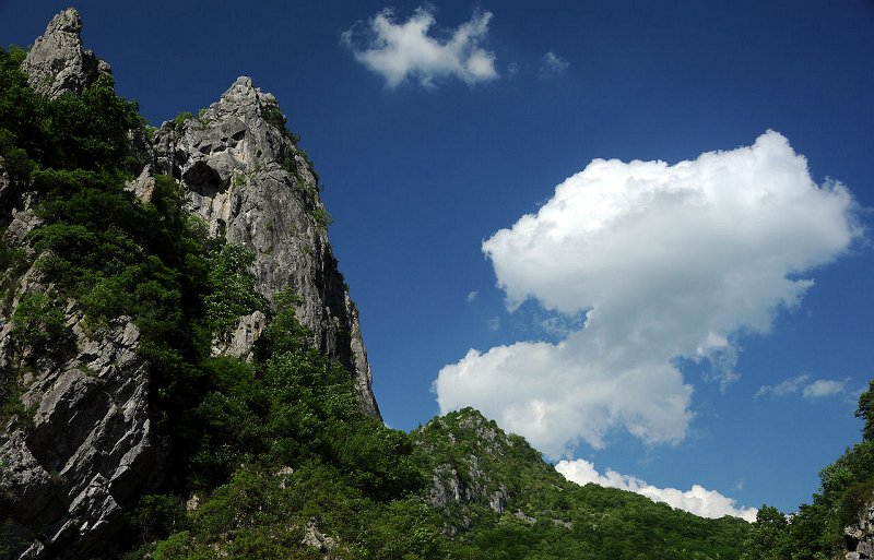 Domogled Valea Cernei