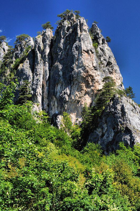 NP Sutjeska.