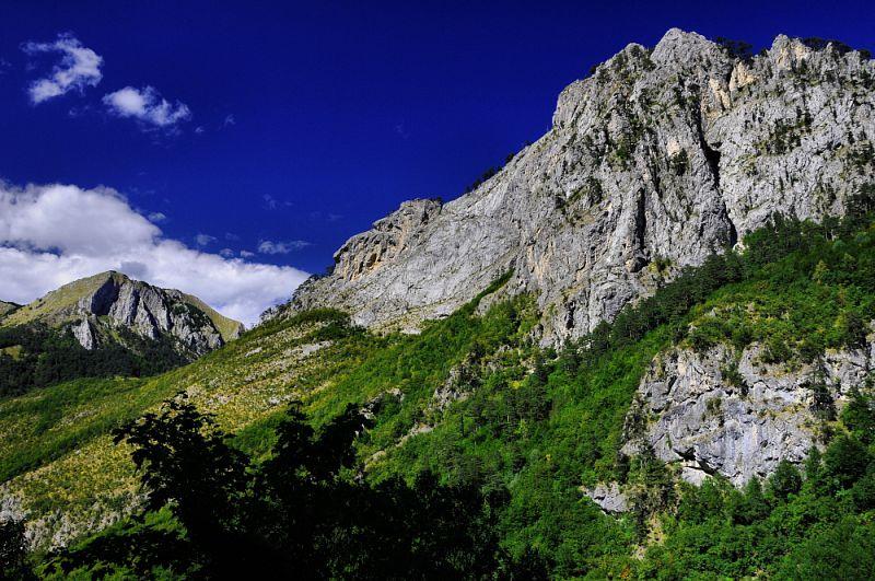 NP Sutjeska