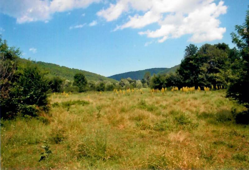 Údolí Veleky