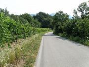 Vogrsko, Ville Montevecchio, Vogersko