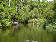 Ropotamo River, река Ропотамо