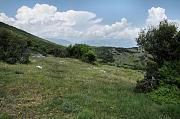 Kallithea