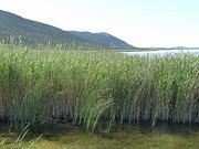 Vransko Jezero, Lago di Vrana, Vranjsko Jezero