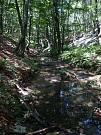 jeskyně Vranovec, Peştera cu Apă