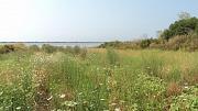 severní břeh jezera Korission