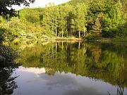 jezero Bojana, Bojana Lake