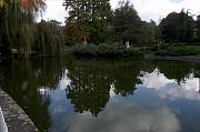Danube Park, Novi Sad