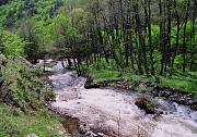 Bistrica, Bistritsa