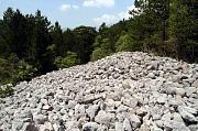 Kamenná pole a jejich okolí na úpatí hor v NP Llogarë jako vhodná útočuště druhům A. nigropunctatus, P. muralis, A. fragilis a Vipera ammodytes
