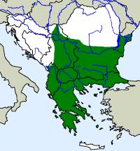 rozšíření krátkonožky evropské na Balkáně (zeleně)