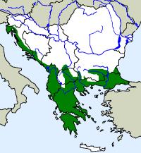 rozšíření štíhlovky útlé Platyceps najadum na Balkáně (zeleně)