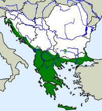 rozšíření užovky levhartí Zamenis situla  na Balkáně (zeleně)
