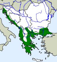 rozšíření šírohlavce východního Malpolon insignitus na Balkáně (zeleně)