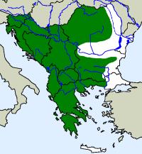 rozšíření mloka skvrnitého na Balkáně (zeleně)