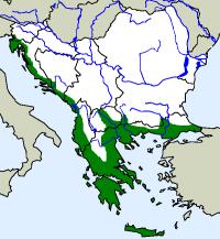 rozšíření skvrnovky kočičí na Balkáně (zeleně)