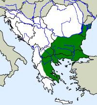 rozšíření želvy žlutohnědé Testudo graeca  na Balkáně (zeleně)