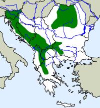 rozšíření čolka horského Mesotriton alpestris na Balkáně (zeleně)