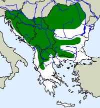 rozšíření zmije obecné na Balkáně (zeleně)